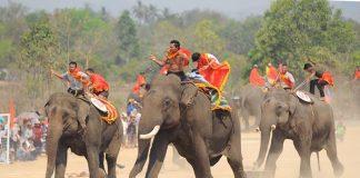 Lễ hội đua voi
