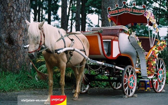 Xe ngựa ở Đà Lạt