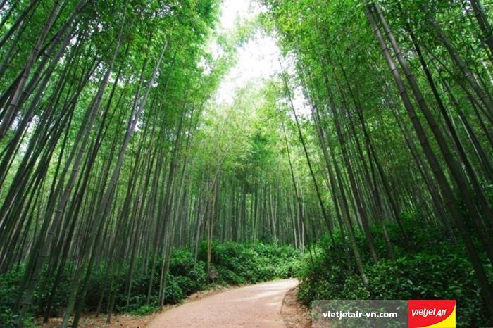 Thiên nhiên Jeollanam